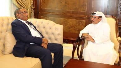 Qatar, Sudan review progress of projects