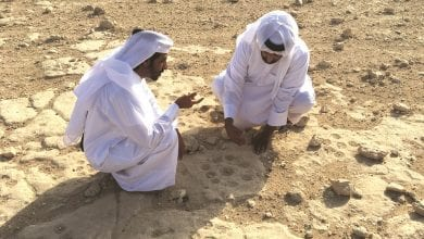 Discovery of new rock carving site set rewrite Qatar's ancient past