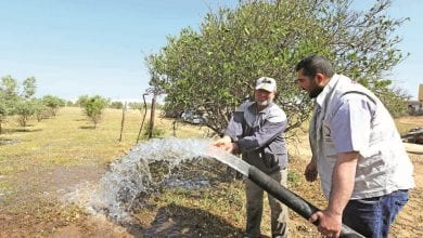 Qatar Charity launches farming project in Gaza Strip