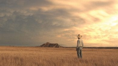 DFI Cinema to screen globally-acclaimed 'The Rider'