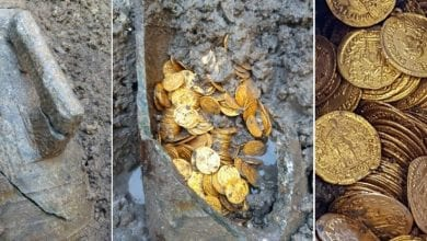 An Actual Pot of Gold Coins Has Just Been Found Under an Italian Theatre